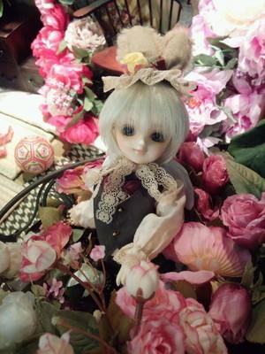 CAI_0362.JPG